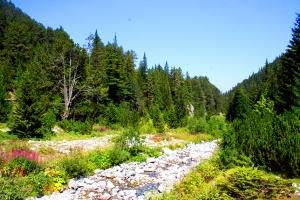 Маркирани туристически маршрути в Национален парк Пирин
